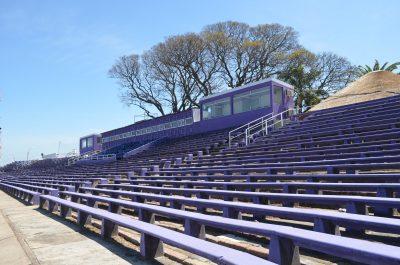 デフェンソールの紫スタンド