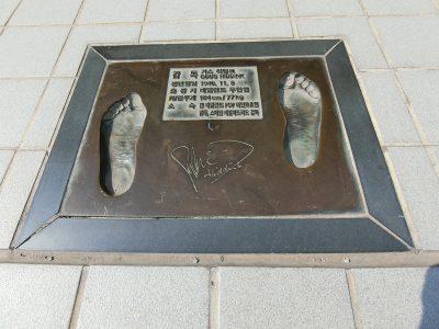 ヒディンクの足型